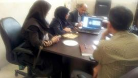 Skype meetings to discuss about executive problems during online data entry